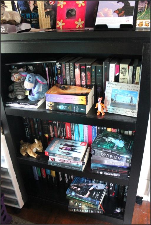 Kat's bookcase