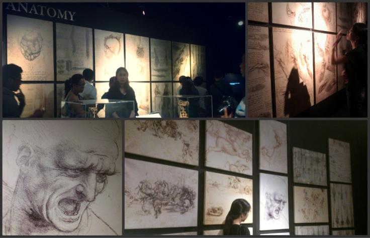 The Vinci The Genius Exibit