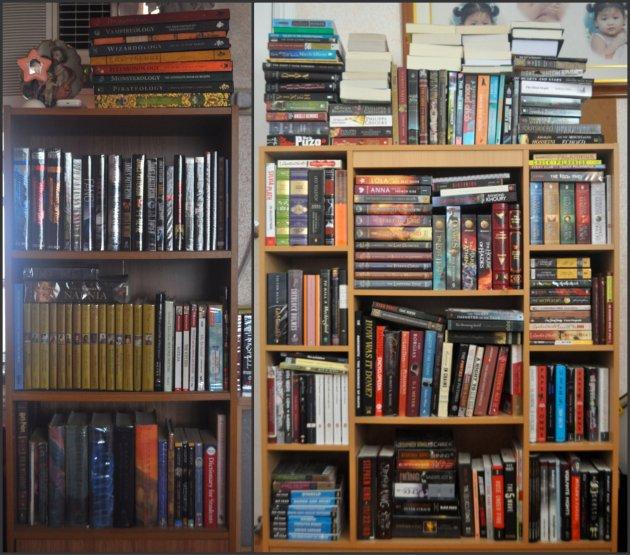 Kayla's Bookshelves