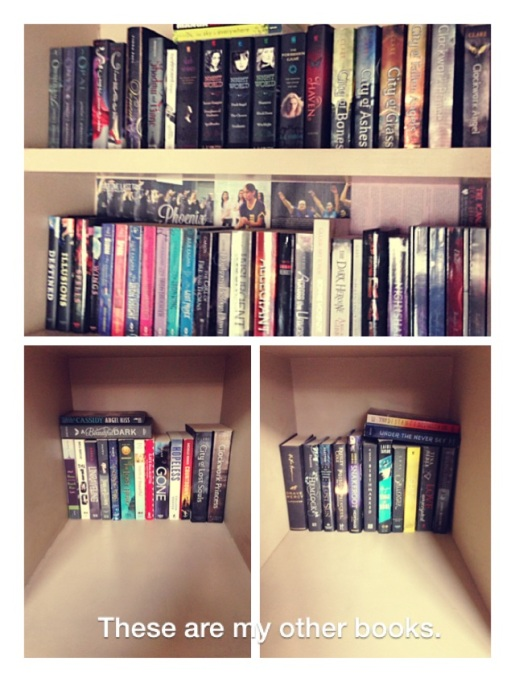 Chyna Book Shelves 2