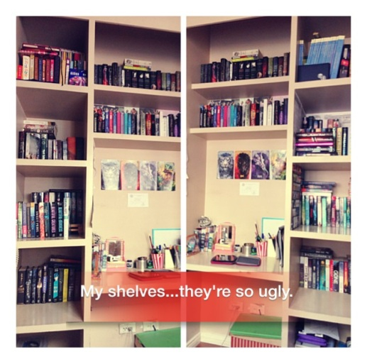 Chyna Book Shelves 3
