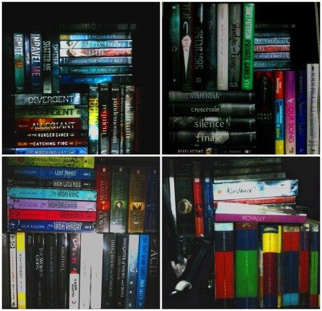 Kazhy's Bookshelf2